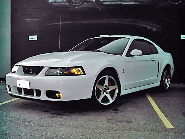 2003 Ford Mustang Svt Cobra The Motoring Enthusiast Journal My