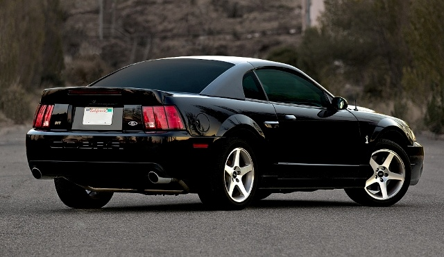 2004 ford mustang cobra terminator auto bild idee. Black Bedroom Furniture Sets. Home Design Ideas