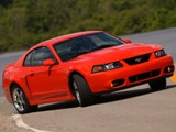 2003-2004 Ford Mustang SVT Cobra: An epic 50 year journey