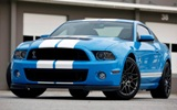 2010-2014 Shelby GT500